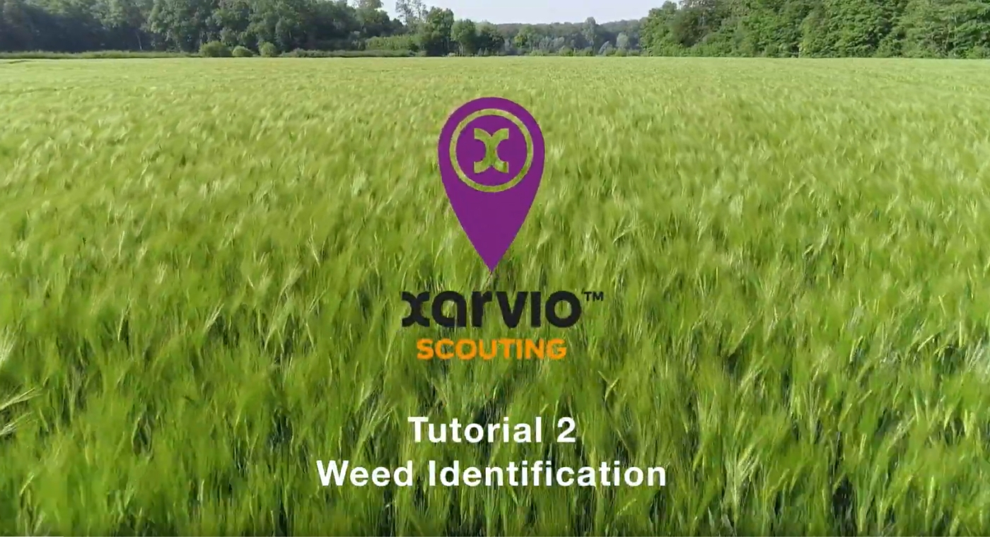 xarvio SCOUTING Tutorial Part 2 (EN)