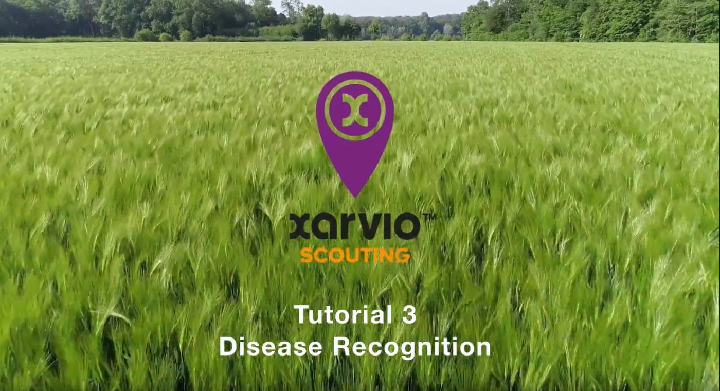 xarvio SCOUTING Tutorial Part 3 (EN)